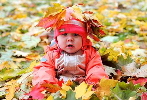 7-месяцев девочка сидит в кучу клена листвы