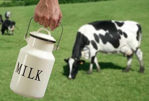 Корова и рука с бидончиком молока