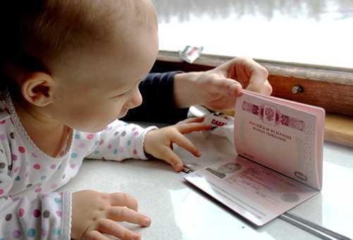 Малыш смотрит на загранпаспорт