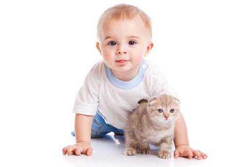 Физиология 9-месячного ребенка