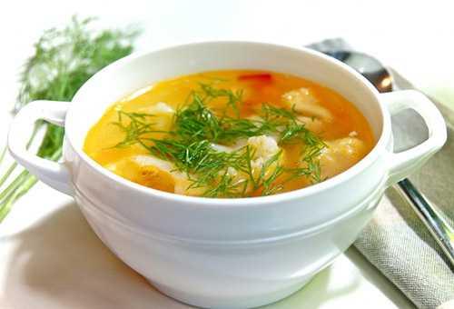 Рецепты супов для кормящих грудью