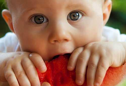 Малыш грызет кусок арбуза