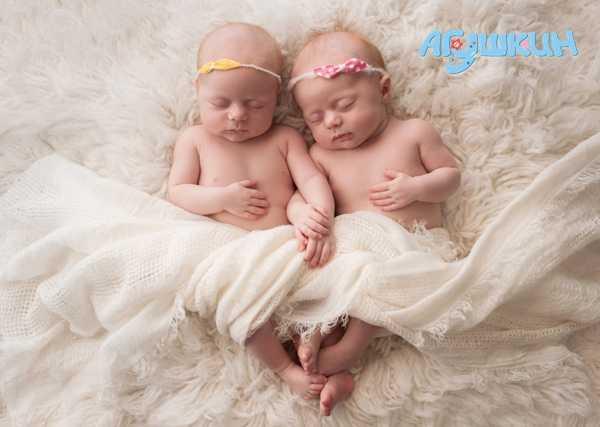 Близнецы и двойняшки в чем разница
