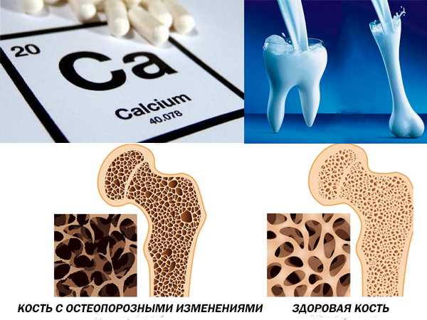 Роль кальция в организме