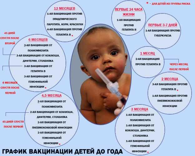 От каких инфекций ребенка прививают в три месяца