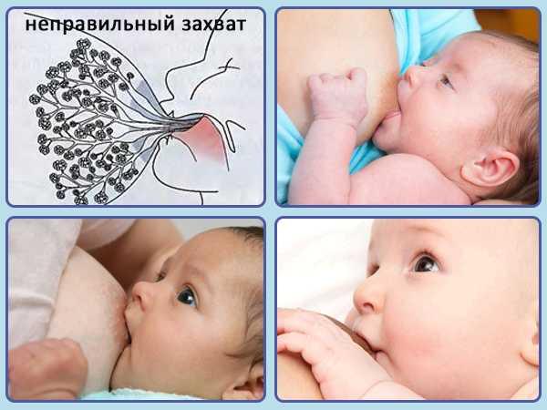 Как прикладывать к груди новорожденного?